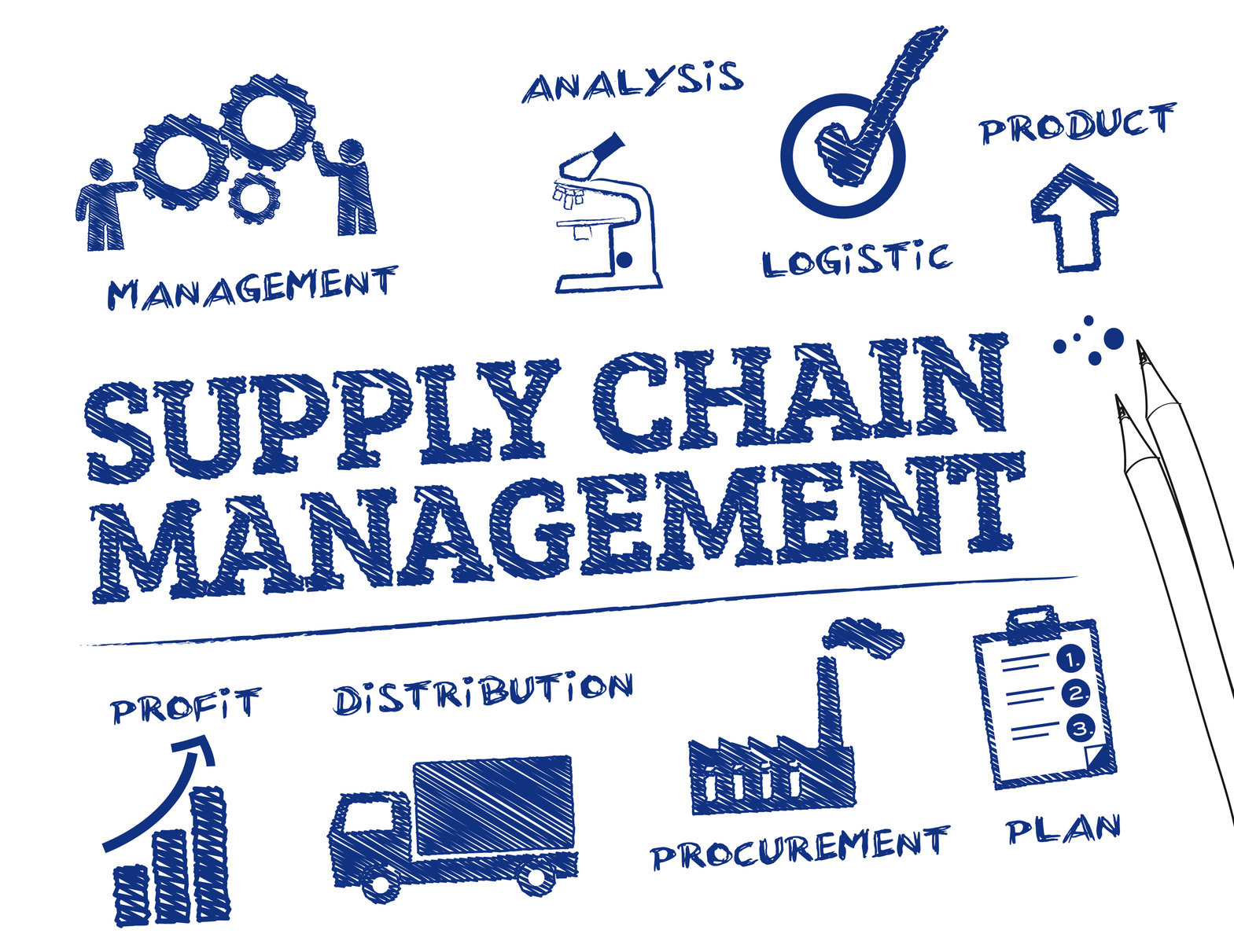 The importance of a supply chain management to the success of a business company