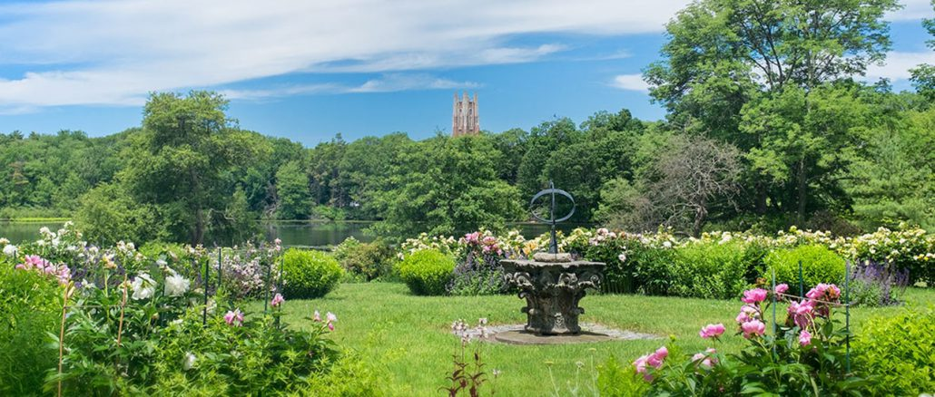 Spend the summer in the grounds of Wellesley College